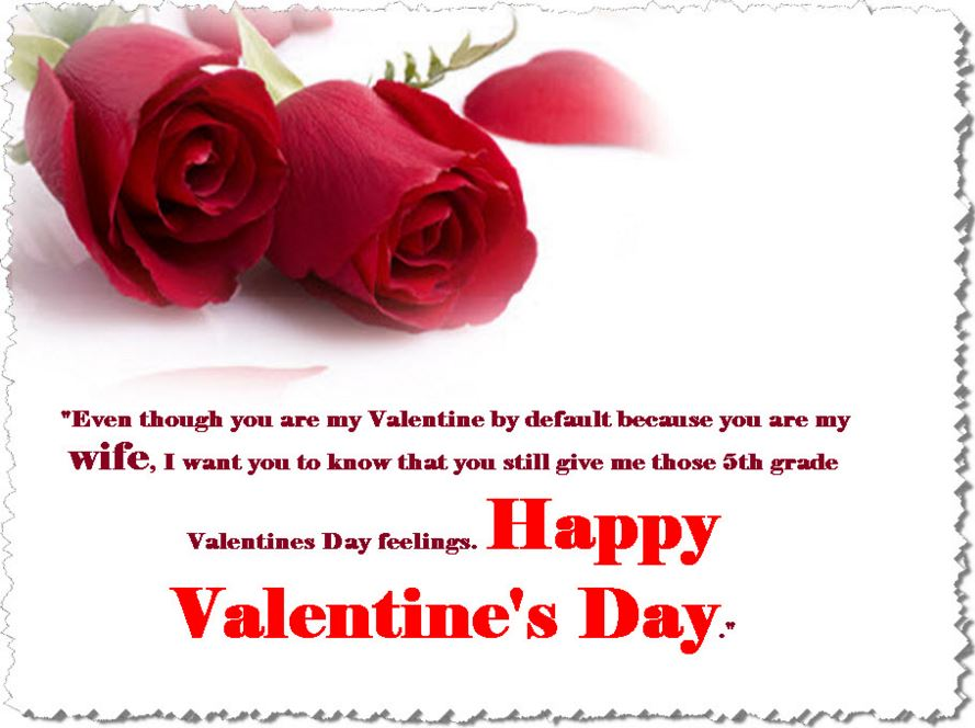 Valentine Messages for Girlfriend Valentines Message for Special
