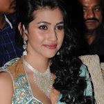 Anjali Lavania Sizzled at Panjaa Audio Launch