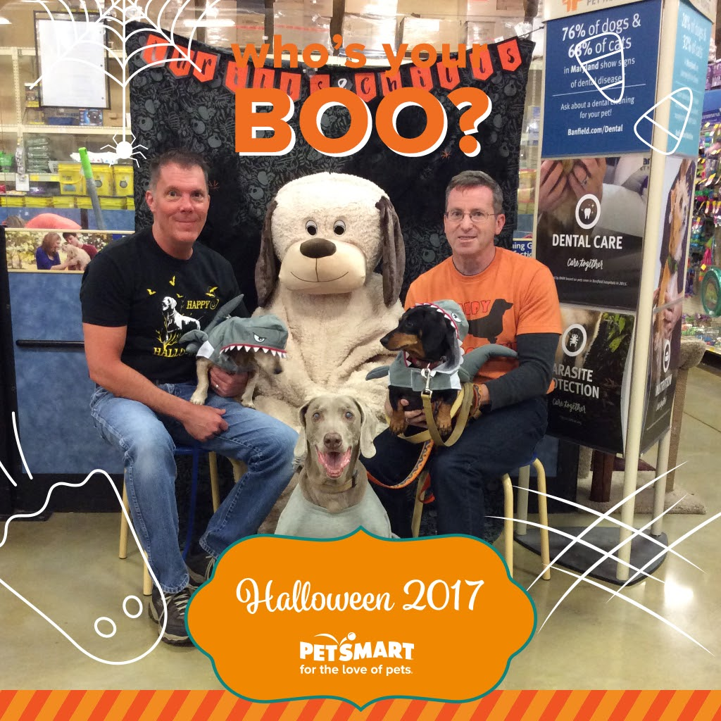 The On Line Buzzletter November 2017 Sprite Pet 15l Family Pic At Halloween Tom Franklin Dolly Rob Tyler