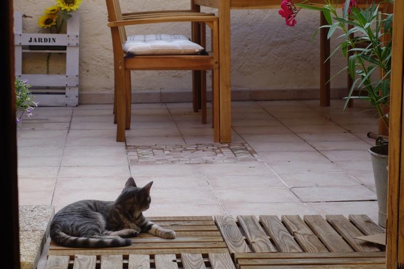 DECO : Ma terrasse, avant-après. / www.by-laura.fr