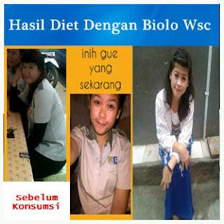 testimoni-kapsul-peluntur-lemak-wsc-biolo