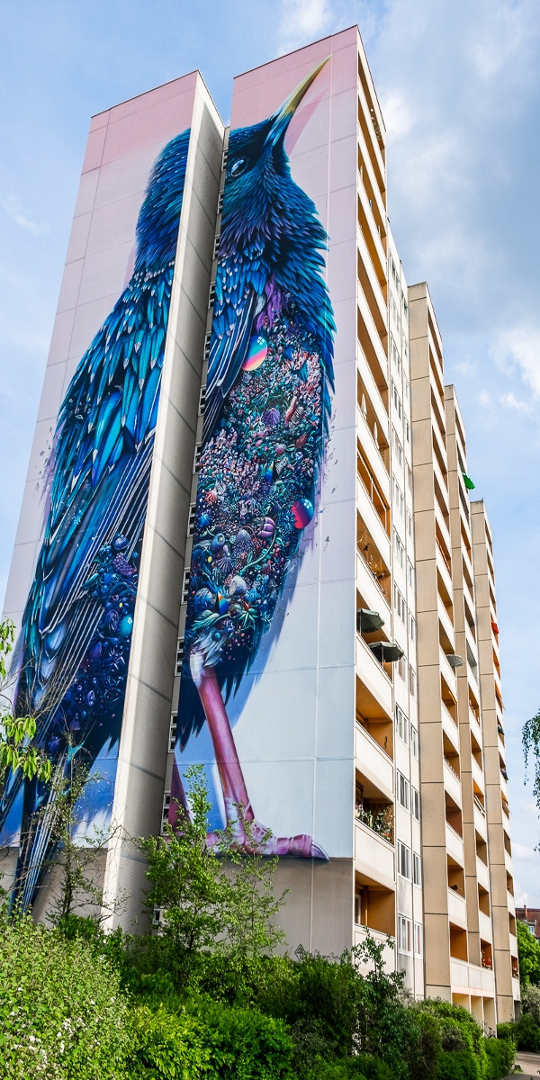 Street Art ideas