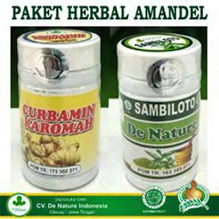 Obat Amandel De Nature