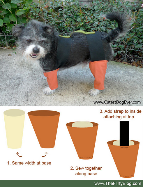 If It's Hip, It's Here (Archives): How To Turn Your Dog ...