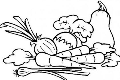 Mewarnai Gambar Sayur Mayur