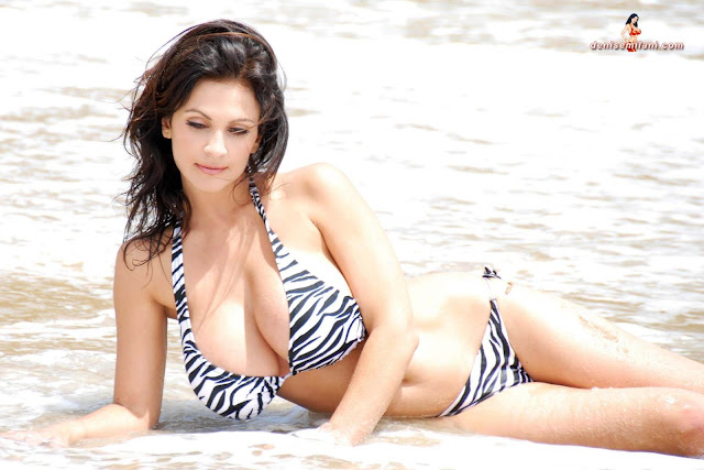 Denise Milani Beach Zebra HD Sexy Photoshoot Hot Photo 14
