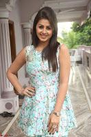 Nikki Galrani at Prema leela pelli gola trailer Launch ~  Exclusive 084.JPG