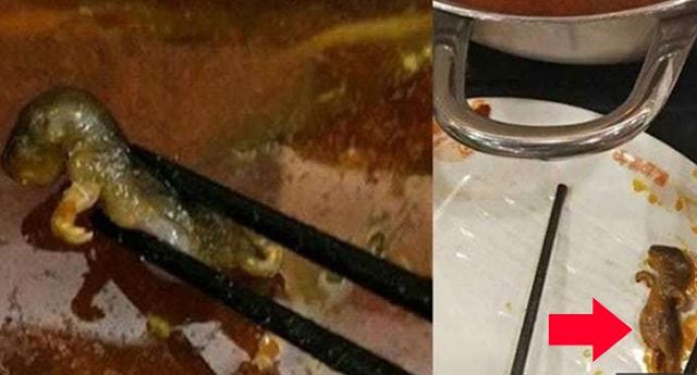 Miris, Wanita Tengah Hamil di China Tewas Seketika Setelah Mengonsumsi Sup Bangkai