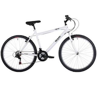 Stolen Bicycle - Flite Rapide