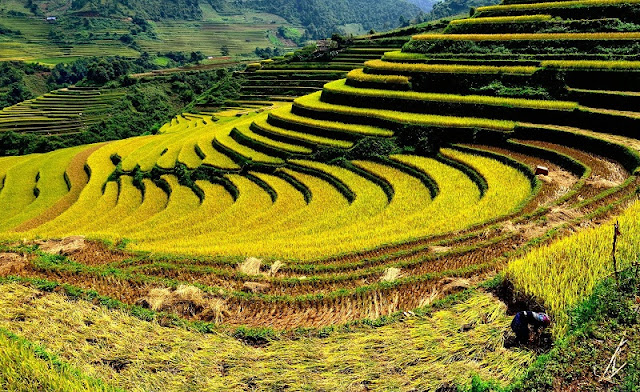 The insanely picturesque Sapa trek in Vietnam 3