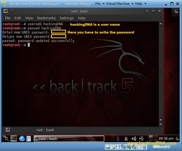 new user in backtrack 5