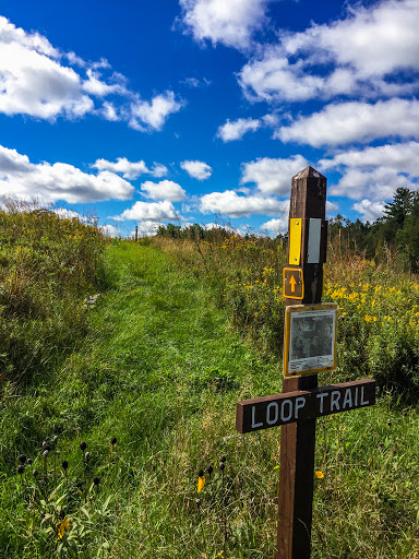 Ice Age Trail Pine Lake Segment