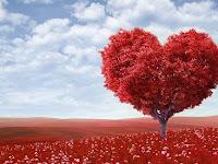 Ide Kado Untuk Pasangan Di Hari Valentine, Dijamin Suka!