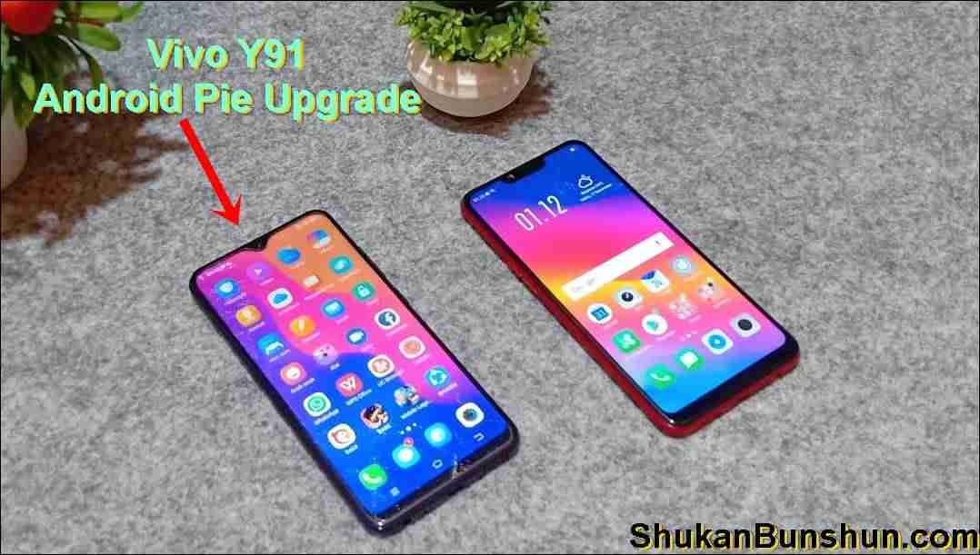 Cara Update Vivo Y91 ke Android Pie 9 0 Tanpa PC Lewat HP - Shukan