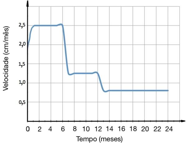 gráfico mostra a velocidade de crescimento de um bebê em função do tempo em seus primeiros 24 meses de vida