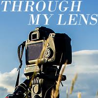 http://mersad-photography.blogspot.com/search/label/throughmylens