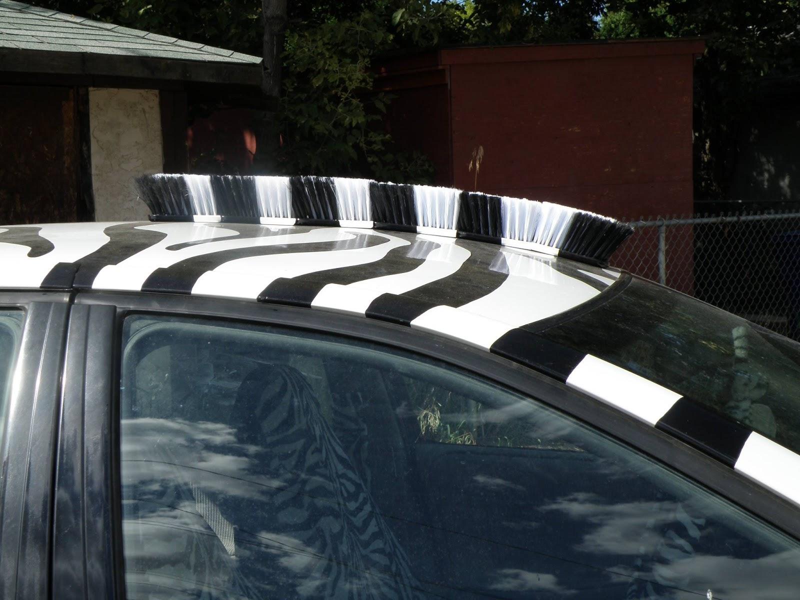 The Zebra Car - Saskatoon, SK, Canada