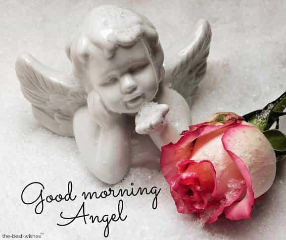 good morning angel pic