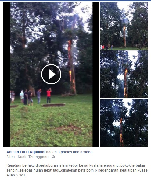 Pokok Besar Terbakar Tiba-Tiba Berhampiran Perkuburan Islam Di Terengganu