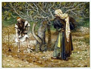 Resultado de imagen para Un hombre tenía plantada una higuera en su viña, fue a buscar fruto en ella y no lo encontró