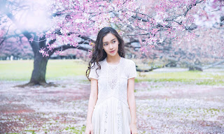 Angelababy HD Wallpapers