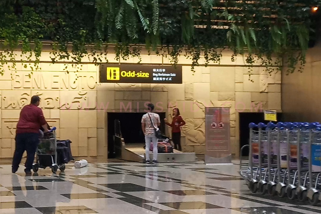 mengurus koper hilang di bandara