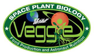 NASA Testing Method to Grow Bigger Plants in S...