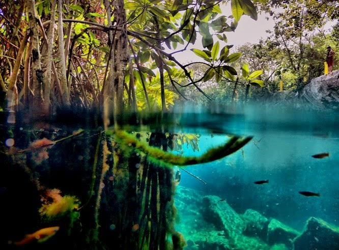 Maja vízitemplomot találtak Belize-ben