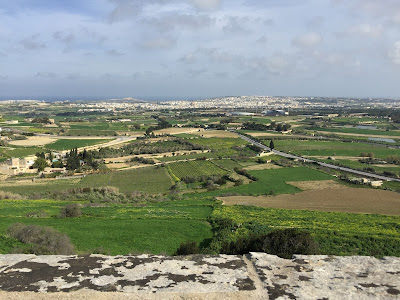 View from Mdina north.