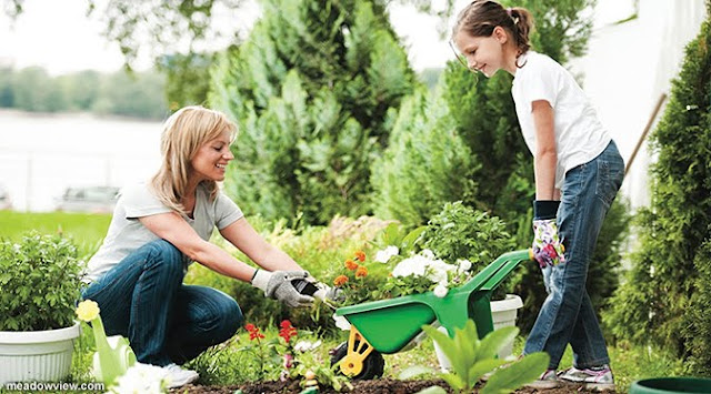 Hanya Gara-gara Menggaruk Tangan, Pengacara Ini Meninggal Dunia Usai Berkebun, Patut Di Waspadai Penyebabnya!