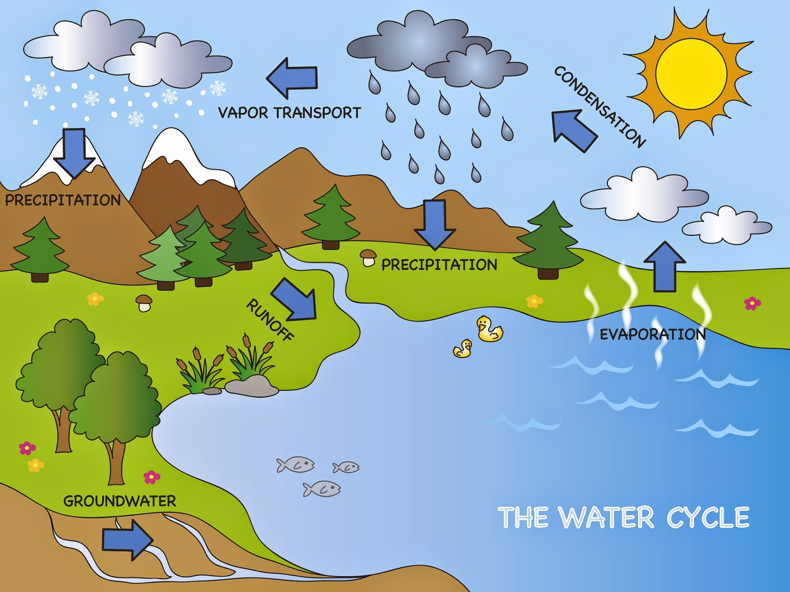 Earth S Water Supply Lesson Plans For Elementary