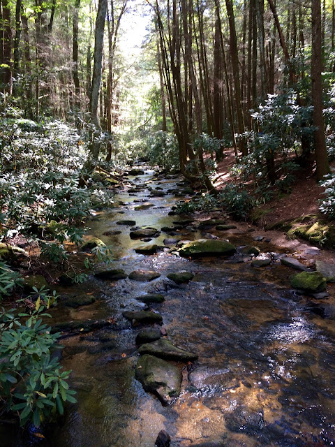 Hiking Springer Mountain to Long Creek Falls AT