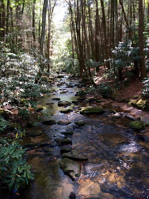 Hiking Springer Mountain to Long Creek Falls AT