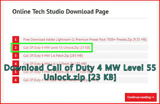 Download COD 4 MW level 55 save profile