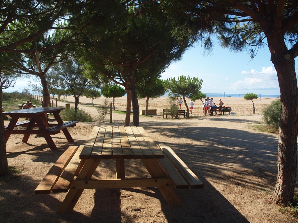SOM DE PÍCNIC: Àrea de pícnic Rial de la Serp, Arenys de Mar, Maresme
