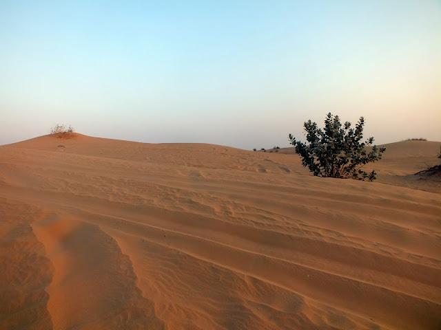 dunas y arena en el desierto de Dubai