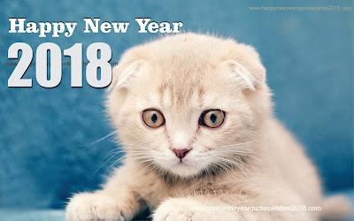 Download 2018 Happy New Year Wallpaper