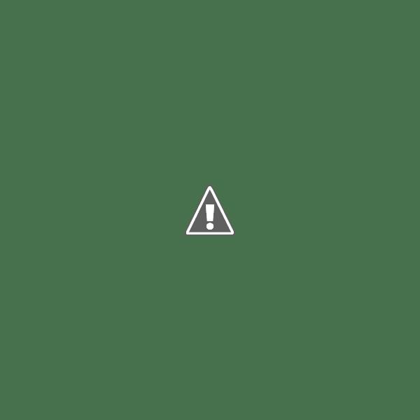 Salmon Sashimi from Costco