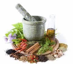 Obat Tradisional Untuk Mengobati Penyakit Sipilis