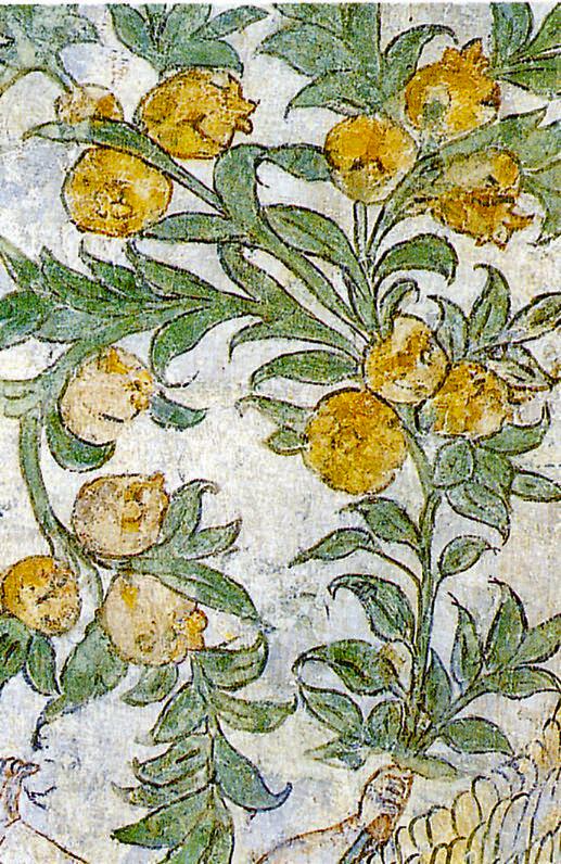senza dedica Ferrara Casa Romei il giardino delle Sibille
