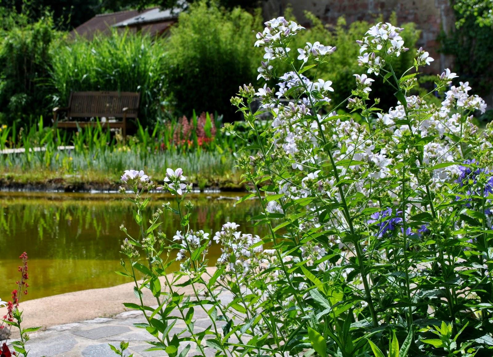 Scwimmteichgarten