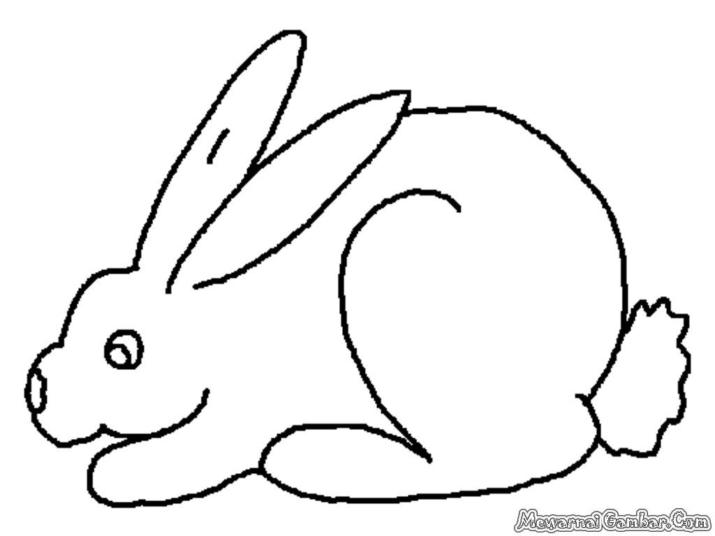 Mewarnai 20 Gambar Kelinci