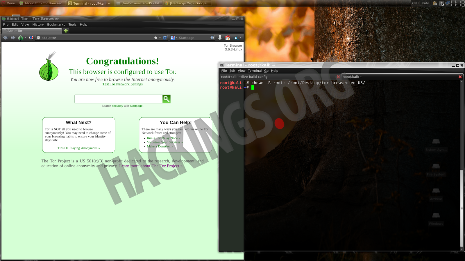 Kali linux tor browser root hydra2web tor browser каталог гирда