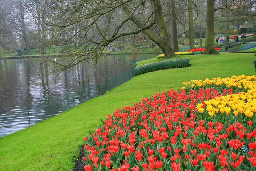 Holanda en flor jardines de keufenhof viajar sin fronteras - Jardines de tulipanes en holanda ...