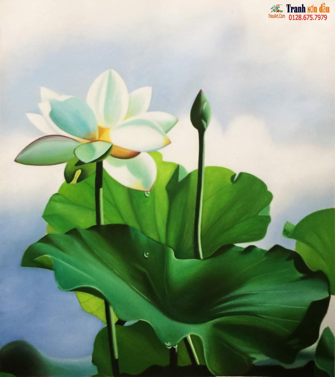 vẽ tranh hoa sen