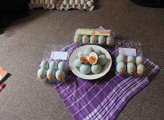 inovasi pengolahan telur terbaru