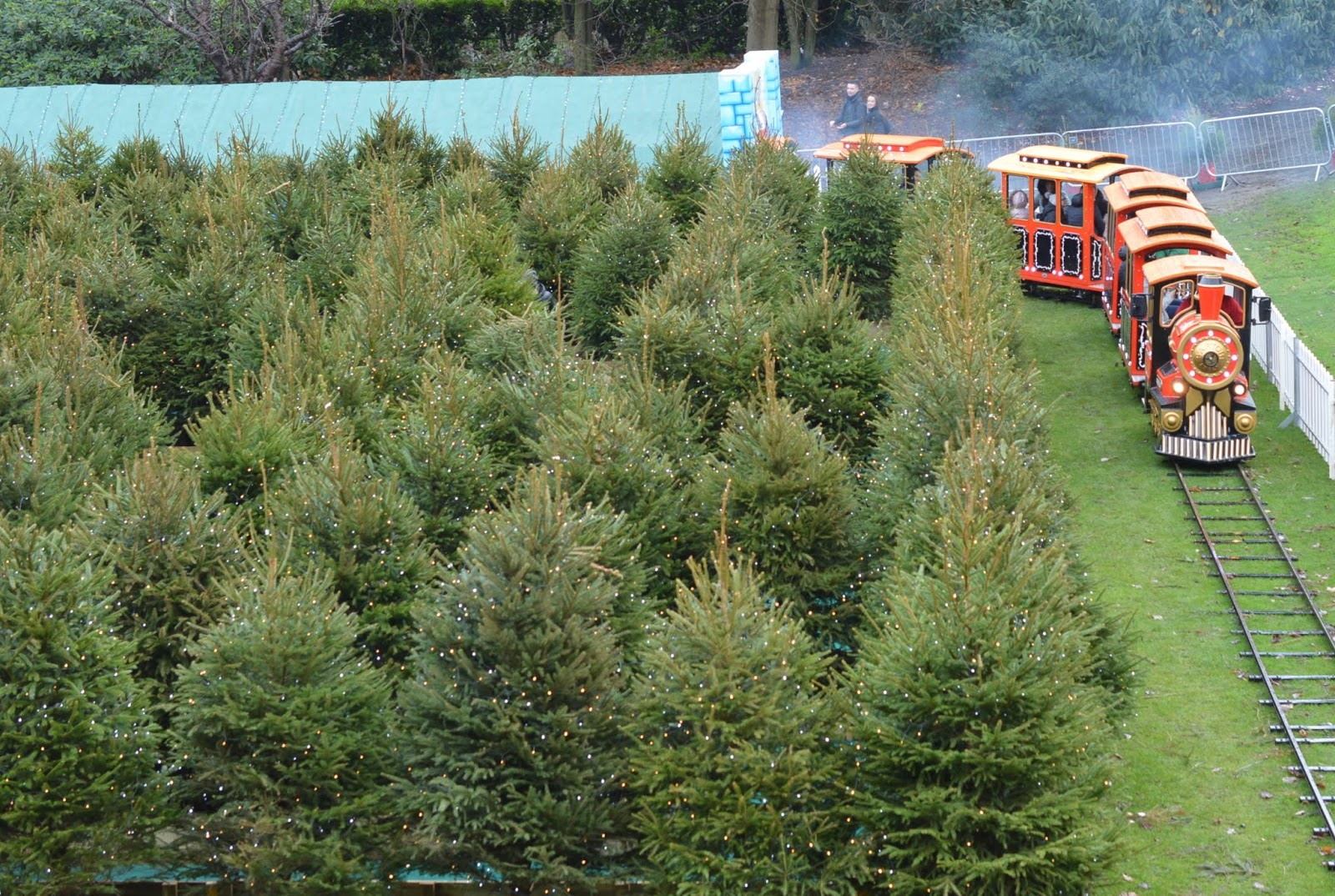 Top Tips for Driving to Edinburgh Christmas Markets with Kids - Christmas Tree Maze