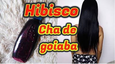 Shampoo Caseiro de hibisco e goiaba