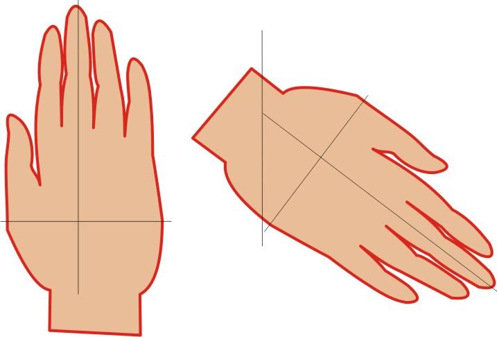 b030060b42 Una forma fácil de hacer el trazado es colocar nuestra mano sobre un pliego  de papel y dibujar una curva alrededor de ella