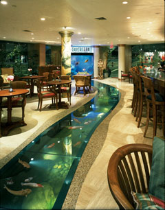 beautiful styles of fish aquariums | download photos